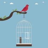 клетка птицы вне иллюстрация вектора