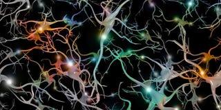 Клетки головного мозга бесплатная иллюстрация