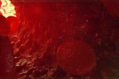 клетки крови иллюстрации 3D в вене Клетки крови пропускают в сосуде медицинская человеческая концепция здравоохранения Стоковое Изображение