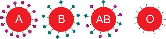 клетки крови Стоковые Изображения RF