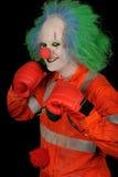 клоун боксера Стоковая Фотография