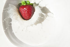 клубника выплеска молока Стоковое Фото