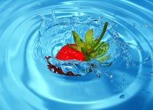 клубника выплеска Стоковое Изображение