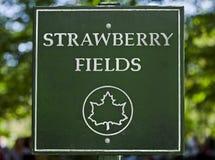 клубника знака парка центральных поле Стоковая Фотография