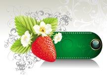 клубника карточки предпосылки флористическая бесплатная иллюстрация