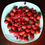 клубника красная охлаждает стоковая фотография