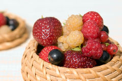 клубника красного цвета поленики черной смородины стоковая фотография