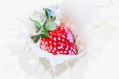 Клубника падая в шар молока с брызгать молока Стоковые Фото