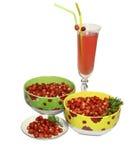клубника поддонника плит ягод одичалая Стоковое Изображение RF