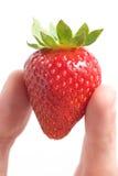 клубника руки Стоковая Фотография