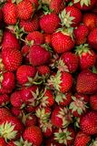 Клубника Свежий органический макрос ягод отрезанный ананас плодоовощ отрезока предпосылки половинный Стоковая Фотография RF
