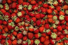 Клубника Свежий органический макрос ягод отрезанный ананас плодоовощ отрезока предпосылки половинный Стоковое фото RF