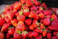 Клубника Свежий органический макрос ягод Стоковые Фото