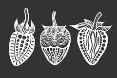 Клубника черно-белая Стоковое Фото