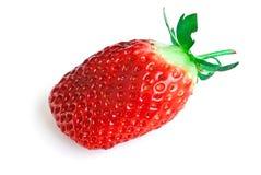 клубника ягод Стоковые Изображения