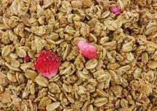 клубника granola хлопьев Стоковые Фотографии RF