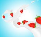 Клубники в выплеске молока Стоковые Изображения