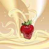 клубники молока Стоковая Фотография