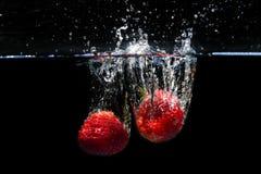 Клубники падая в воду и брызгая падения на черноте Стоковое Изображение