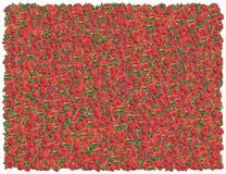 клубники предпосылки стоковое изображение rf