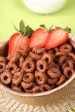 клубники шоколада хлопьев Стоковая Фотография RF