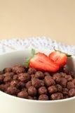 клубники шоколада хлопьев Стоковое Фото