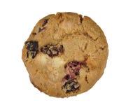 клюква печенья Стоковая Фотография RF