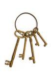 ключевое кольцо Стоковые Изображения RF