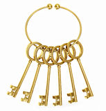 Ключи золота Стоковое Изображение