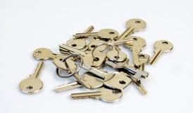 ключи пука Стоковые Изображения RF