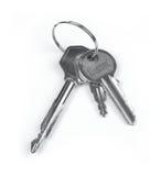 ключи Стоковые Изображения RF