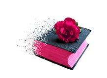 Книга библии влияния спада для микро-запаса стоковые изображения rf