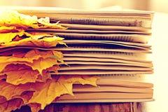 Книга вызывает желтые листья Стоковая Фотография RF