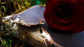 Книга влюбленности стоковые фотографии rf