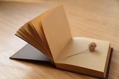 Книга и высушенный цветок Стоковая Фотография RF