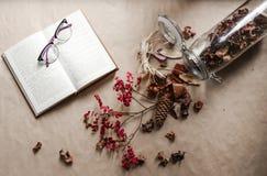 Книга и пункты Стоковые Изображения RF
