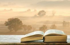 Книга на таблице в утре Стоковые Фото