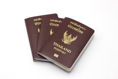 Книга пасспорта Таиланда Стоковая Фотография RF