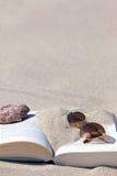 книга пляжа стоковые фотографии rf