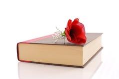книга романтичная Стоковые Изображения RF