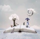 Книга сказа зимы Стоковые Фото