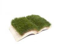 Книга травы Стоковое Изображение RF