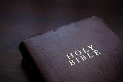 Книга, чтение, библия Стоковая Фотография