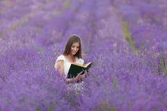 Книга чтения девушки в поле лаванды Стоковое Изображение
