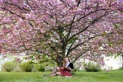 Книга чтения девушки/студент читая книгу в парке/ Стоковая Фотография RF