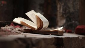 Книга сток-видео