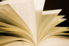 книга 5 Стоковая Фотография