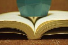 Книга Стоковое Изображение RF