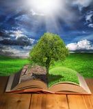 Книга Eco Стоковое Изображение RF