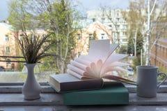 Книга Open загоренная Стоковая Фотография